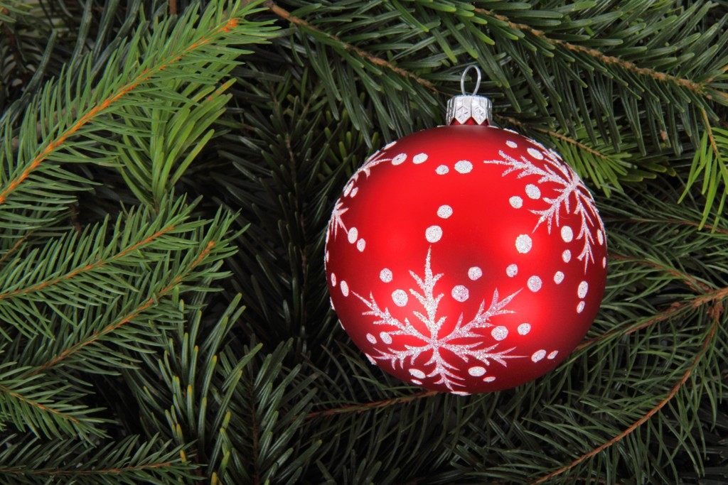 Weihnachtsbilder Suchen.Weihnachtsgrüsse Tc Haag